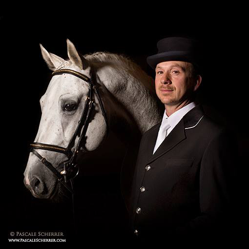 Elevage-LIPIZZAN-PHILIP-Guillaume-Philip13